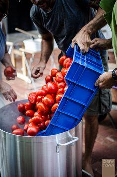 How to Make Tomato Passata Sauce in bulk (The Italian Family Method) Best Italian Recipes, Great Recipes, Favorite Recipes, Interesting Recipes, Lassi, Kimchi, Cooking Tips, Cooking Recipes, Sauce Tomate