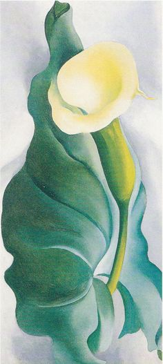 Georgia O'Keeffe. Calla Lily Yellow No 2, 1927