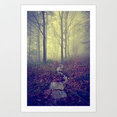 Eerie Wood Art Print by Mark Bagshaw Photography - $16.64