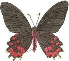 Semperi Butterfly embroidery design  annthegran.com