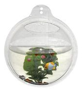 Wrapables Fish Bubble Wall Mount Hanging Acrylic Fish Bowl Betta Mini Aquarium
