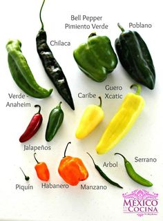 Raw Food Recipes, Sauce Recipes, Mexican Food Recipes, Cooking Recipes, Cooking Tips, Types Of Peppers, Mexican Side Dishes, Vegetable Garden Planner, Spicy Salsa