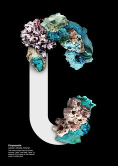 Fun #typography inspiration. We love the realistic coral growing on this letter.