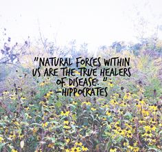 Are you giving your body the nutrition it needs to remain healthy and combat disease? It's much easier than you may think! Work Quotes, Quotes To Live By, Life Quotes, Motivation Quotes, Holistic Medicine, Holistic Healing, Natural Healing, Natural Medicine, Herbal Medicine