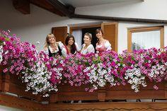 Balkon mit Blumen - Hotel Kristall