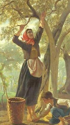 Luigi Bechi, The Harvest of Olives Luigi, Paintings I Love, Beautiful Paintings, Olive Harvest, Illustration Art, Illustrations, Country Art, Olive Tree, Italian Artist