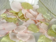 200 Rose Petals Gold and Blush Pale Pink BULK by MorrellDecor