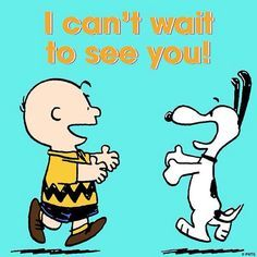Peanuts - Charlie Brown and Snoopy Snoopy Love, Snoopy And Woodstock, Snoopy Shop, Charlie Brown Quotes, Charlie Brown And Snoopy, Peanuts Cartoon, Peanuts Snoopy, Snoopy Pictures, Snoopy Quotes