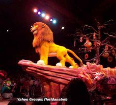 Animal Kingdom Disney World - Best Show at WDW - Lion King