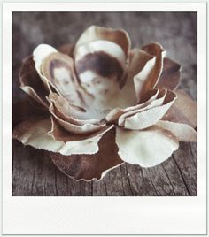 Photos printed on fabric, shaped into flowers.
