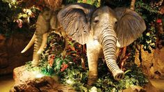 Picture of The Rainforest Cafe in West End, London !!REMEMBER THIS FÜR DEN FAMILY AUSFLUG!!