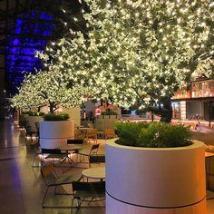 Love the Ovolo Hotel in Wooloomooloo! #travel #travelgram#tourist #tourism #vacation #traveling #trip #mytravelgram #australia #aroundtheworld #sidney #downunder #greatbarrierreef  #cool #cooljetsetters #dicasdeviagem #dicasdeturismo #tlpics #luxurytravel #tlpics #luxurytravel #luxuryhotels #luxuryhotelsworld #beautifulhotels #beautofuldestinations #missaovt #ovolohotel #wooloomooloo by cooljetsetters http://ift.tt/1UokkV2