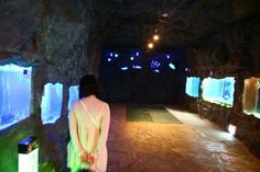 당진 해양테마박물관~♥ 당진, 여행지,  관광지, 가볼만한 곳