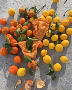 Orange Aesthetic, Summer Aesthetic, Food Bakery, Italian Summer, Neutral, How To Pose, Color Of Life, Pansies, Life Is Beautiful