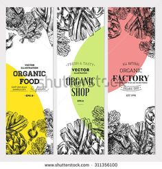 Organic food banner collection. Fresh vegetables. Vector illustration