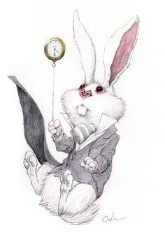 falling rabbit, Bobby Chiu