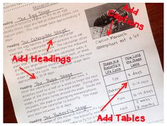 Have students use higher level thinking skills by adding appropriate text features to provided text. This requires students to read the text carefully!