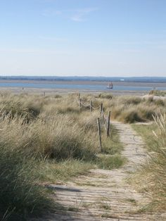 Walking to East Head West Wittering England