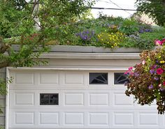 Look up-- There's a flower garden on that garage roof! Click back to the article to see more images of this creative use of outdoor space in Kenmore, NY. This is one of hundreds of gardens you can see during the National Garden Festival in Buffalo.