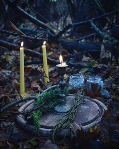 """14 Likes, 1 Comments - KC •○• (@threeoctobermoons) on Instagram: """"Twilight rituals ☄ #christmas #yule #witch #witchcraft #gardendesign #snow #magicalherbalism…"""""""