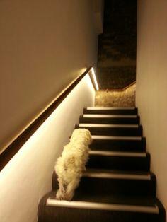 Fast as lightening running upstairs