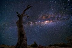 Astrophotography by Lincoln Harrison
