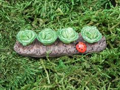 Miniature garden lettuce/cabbage with ladybug by TheLittleHedgerow