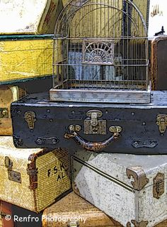 Vintage Suitcases - Altared - Fine Art  Print - Shabby Chic - Wall Art - Home Decor - Still Life Photography - Bird Cage - Retro. $25.00, via Etsy.