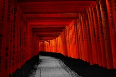 Kyoto, Fushimi Inari Taisha, Paths, Rio, Minimalism, Stairs, Explore, Abstract, Artwork
