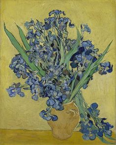 """Van Gogh Museum on Instagram: """"📝 'NOT to give up, even if one feels one is half dying and even if one feels that in material things one can say goodbye to pleasure in…"""" Fleurs Van Gogh, Van Gogh Flowers, Blue Flowers, Spring Flowers, Iris Flowers, Exotic Flowers, Flowers Garden, Yellow Roses, Pink Roses"""