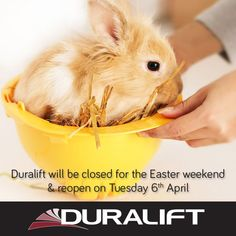 Happy Easter! Duralift will be closed for the Easter long weekend. #Duralift #Easter Easter Long Weekend, Happy Easter, Happy Easter Day