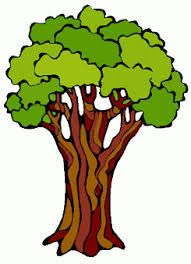 image result for the rainforest trees rainforest pinterest rh pinterest co uk rainforest clipart pictures rainforest clip art free
