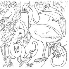 Find This Pin And More On Coloriage Vie Sauvage Forest Animals Coloring