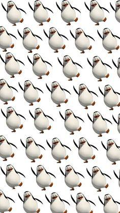 Madagascar penguin wallpaper