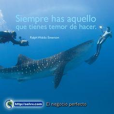 Siempre has aquello que tienes temor de hacer.  Ralph Waldo Emerson. http://selvv.com/el-negocio-perfecto/  #Selvv