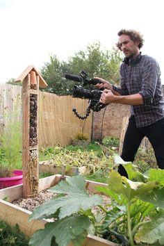 DIY - un hôtel à insectes - Tête d'ange Deco, Vegetable Garden, Bird, Vegetables, Nature, House, Insect Hotel, Permaculture Garden, Garden Projects