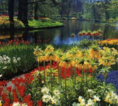 Famous Gardens of the World