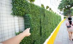 Hmmm ok where can I find this? Faux greenery wall for a DIY backdrop behind bri.- Hmmm ok where can I find this? Faux greenery wall for a DIY backdrop behind bri… Hmmm ok where can I find this? Faux greenery wall for a… - Flower Wall Backdrop, Diy Backdrop, Wall Backdrops, Backdrop Wedding, Wedding Background, Artificial Hedges, Artificial Plants, Backyard Patio Designs, Backyard Landscaping