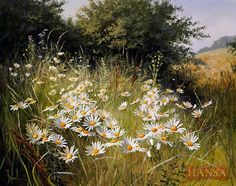 "Photo from album ""Mary Dipnall"" on Yandex. Watercolor Flowers, Watercolor Paintings, Original Paintings, Poppy Field Painting, Foto Art, Wildlife Art, Flowers Nature, Beautiful Paintings, Painting Inspiration"