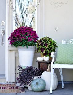 Like this Fall Entryway.  No Orange...white pumpkins, colorful mums!