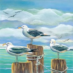 Kathleen Denis seagulls Day Dreaming