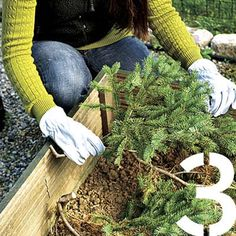 Don't just toss your dead Christmas tree in the trash. Try some of these clever reuse ideas--from insulating perennials and mulching flower beds to creating bird and fish sanctuaries. |  Photo: Kolin Smith | thisoldhouse.com