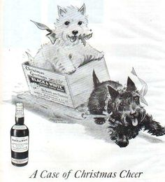 Black and White Scotch Whiskey Ad, Christmas 1945