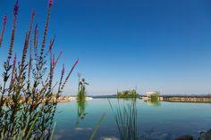 Der 200 m² große Infinity-Naturschwimmteich mit energetisiertem Wasser lädt ein zum Genießen