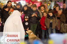 #mercatdereis @Ontinyent 2015 #dogdancing #niñosyperros