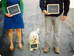 dog save the date - Google Search