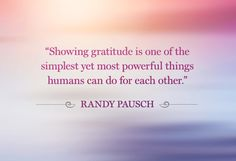 Gratitude fills the heart with love which leads to joy and peace.