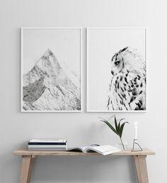 White owl, plakat