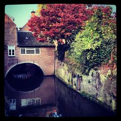 The Place I was Born. Holland, See It, Den, Dutch, Roots, Cool Pictures, I Am Awesome, Beautiful Places, Women's Fashion
