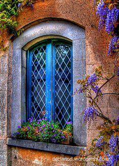 Joseph J Abhar - Wisteria flanking window, Farmleigh House, Phoenix Park, Dublin, Ireland. Photo by Declan O'Doherty. Old Windows, Windows And Doors, But Is It Art, Through The Window, Old Doors, Window Boxes, Wisteria, Doorway, Belle Photo
